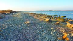A Quick Walk on Gooseberry Island (wildukuleleman) Tags: gooseberry island westport ma massachusetts beach horseneck cold february