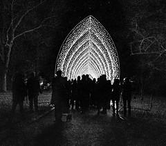 Kew Gardens Winter Light Festival (tramsteer) Tags: tramsteer kew gardens light festival tunnl people mono night trees london england europe geotag