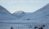 Farm Stóri Dalur. (joningic) Tags: stóridalur djúpidalur eyjafjörður eyjafjarðarsveit eyjafjordur nature snow valley northiceland north mountains mountain winter january 2019