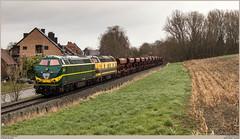 TUC-Rail 5528 + 5508 @ Tubize (Wouter De Haeck) Tags: belgië belgique belgien infrabel l115 clabecq clabecqmarchandises quenast waalsbrabant brabantwallon tubize tucrail hld55 bn labrugeoiseetnivelles gm generalmotors cargo güterzug freighttrain traindemarchandise steenslag steenslagtrein ballast gravier hasselt