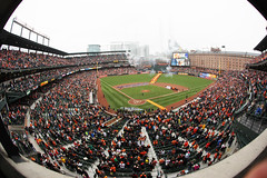 Orioles Pics (StateMaryland) Tags: os baseball sports fan fans opening day mlb major league downtown charm city bird birds warehouse field steve kwak