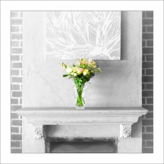 Flowers On Sunday (Daniela 59) Tags: sliderssunday selectivecolour flowers interior mantlepiece blackandwhite hss lambertsbay westerncape southafrica squareformat danielaruppel