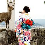 Itsukushima Shrine thumbnail