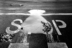 Don't stop in that puddle (jaume zamorano) Tags: blackandwhite blancoynegro blackwhite blackandwhitephotography blackandwhitephoto bw d5500 ground puddle lleida monochrome monocromo nikon noiretblanc nikonistas pov road street streetphotography streetphoto streetphotoblackandwhite streetphotograph urban urbana