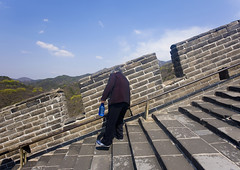 Old Woman Going Down The Great Wall, Beijing, China (Eric Lafforgue) Tags: mg9520 adultsonly ancient ancientcivilization architecture asia badaling back beijing brick buildingexterior china chinese copyspace day famousplace fortress fulllenght greatwall greatwallofchina history horizontal internationallandmark length long nationallandmark oldwoman oneperson onewomanonly outdoor solitude stairs steppy stone stonewall surroundingwall tourism travel unescoworldheritagesite unrecognizableperson vertical wall woman worldheritage