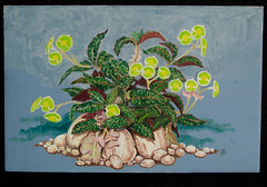 Euphorbia (M.P.N.texan) Tags: art paint painting acrylic acrylics succulent euphorbia botanical handpainted original mpn