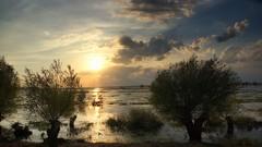 *** (pszcz9) Tags: polska poland przyroda nature natura naturaleza zachódsłońca sunset woda water drzewo tree pejzaż landscape beautifulearth sony a77 wiosna spring