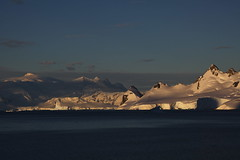 IMG_6898 (y.awanohara) Tags: cuvervilleisland cuverville antarctica antarcticpeninsula icebergs glaciers blue january2019