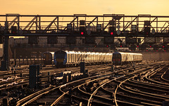Southern shine (Robert France) Tags: 2019 376 377 700 700129 750vdc bombardier britain british busyrailway class376 class377 class700 crowdedrailway desiro desirocity electric electricmultipleunit electricrailway electrictrain electrostar emu england english franchise fullrailway fulltocapacity glint glinting glintingtrain glints goahead goldglint govia goviathameslinkrailway gtr innersuburbantrain keolis londonbridge publictransport railway railwaycapacity railways rushhour set siemens southeast southeastern southeasterntrains southeasterntrainssuburbantrain southern sunrise sunrises thamelinktrain thameslink train trains transport travel traveling uk unitedkingdom