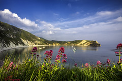 Lulworth Cove (Gavmonster) Tags: gswphotography nikon d7500 nikond7500 lulworth lulworthcove dorset unitedkingdom uk bay sea boats cliffs flowers sky clouds blue green pink jurassiccoast worldheritagesite wideangle sigma1020mm
