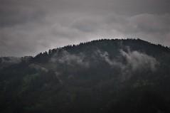 Nubes bajas en Navelgas (enrique1959 -) Tags: martesdenubes martes nubes nwn navelgas asturias españa europa natureinfocusgroup