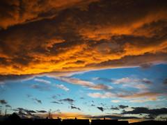 (turgidson) Tags: panasonic lumix dmc g7 panasoniclumixdmcg7 panasonicg7 micro four thirds microfourthirds m43 g lumixg mirrorless 20mm f17 asph panasonic20mmf17asph 20mmf17 20mmf17asph prime lens primelens pancake hh020 silkypix developer studio pro 9 silkypixdeveloperstudiopro9 raw bray wicklow ireland sunset evening spring march sky clouds blue orange p1290059 dramatic