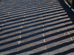 lines (Cosimo Matteini) Tags: cosimomatteini ep5 olympus pen m43 mzuiko45mmf18 firenze florence shadows lines paving