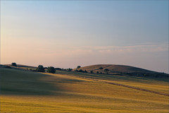 Startop (meniscuslens) Tags: startop hill pitstone buckinghamshire ashridge estate national trust shadow chilterns sky field hedge