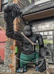 77/365 (Charlie Little) Tags: keswick cumbria lakedistrict ape gorilla cameraphone mobilephotography huawei p20pro leica p365 project365
