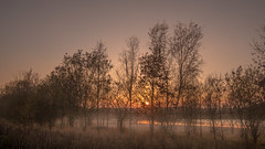 Another sunset over the lake... (- A N D R E W -) Tags: sunset lake mist fog trees colors sunstar evening grass haze twigs nature atardecer shadows outside water sky cielo agua night light clouds