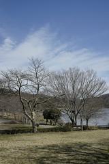 20190320a73_6282 (Gansan00) Tags: lce7m3 α7ⅲ sony japan 大分県 oita 日本 beepu 別府 landscape snaps ブラリ旅 03月 fe24105f4