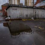 Abandoned mental asylum, Whitchurch, Cardiff