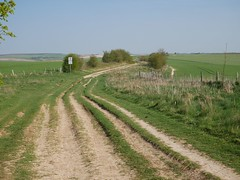 The Ridgeway (John Spooner) Tags: ridgeway track berkshire england downs downland