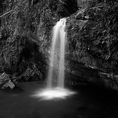 Hydrodynamics (Eddie La Mole) Tags: elyunquenationalforest nature rainforest juandiegocreek waterfall blackandwhite monochrome 6x6 mediumformat squareformat film 120 bronicas2a hp5 d761118mins