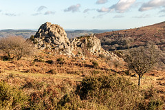 Greator Rocks, Dartmoor National Park (Keith in Exeter) Tags: dartmoor landscape greator rocks moorland tor hill outcrop gorse bracken tree sky devon