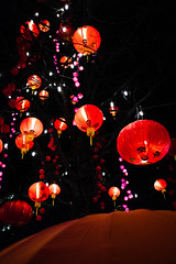 Red (imImaged) Tags: chinese new years 2018 bute street robson vancouver british columbia canada bc yvr red night fuji umbrella lantern lights tree