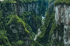 Cânion do Itaimbezinho - Cambará do Sul - Rio Grande do Sul - Brasil (TLMELO) Tags: cânionfortaleza fortaleza canyon cânion pedro rock precipício cambará do sul rio grande brasil riograndedosul brazil gaúcho pedra green verde mata forest