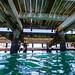 Underwater at Portsea Pier-11