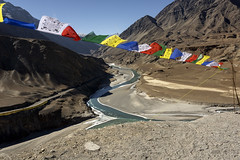 Prayer flags (tmeallen) Tags: prayerflags culture travel mountains valleys wind confuence leh srinagar roads landscape