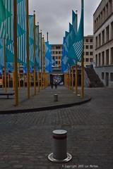 Greens and Blues (Spotmatix) Tags: 24mm 24mmf28 a68 belgium brussels camera landscape lens minolta places primes sony urban