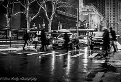 Crossing in the rain (broadswordcallingdannyboy) Tags: mono bw city manhattan nyc ny newyork eos7d leonreillyphotography leonreilly copyright donotcopy mood atmosphere newyorkcity usa eastcoast americafuckyeah america bwcity light newyorkminute newyorkstateofmind newyorkmono nycinbw downtown streetshooter rawstreetphotography churchstreetnyc bwstreet efs24mmf28stm