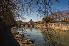 Spring in Rome (Michał Banach) Tags: canonef1635mmf4lisusm canoneos5dmarkiv italy rome rzym stpetersbasilica tiber ancient architecture bluesky citycityscape clearsky holiday river spring it