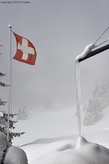 Swiss Winter mood (Furcletta) Tags: nikond800 outdoor places europe switzerland arosa che snow winter ice lense 70200mm28efl colours black grey red white daylight handheld flag pole swissflag lowkey winterphotography windy wind snowfall