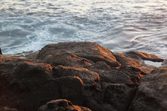 Crab 2 (jtbradford) Tags: kauai hawaii