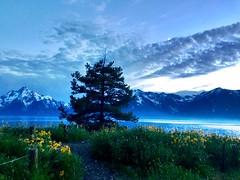 Grand Teton National Park 💙 (Anya_khv) Tags: absolutelystunningscapes explore travel beautiful usa wyoming nationalpark grandteton