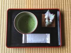 First Macha: Japan Trip 2016-05-16 (KellarW) Tags: macha green tea teatime japan break