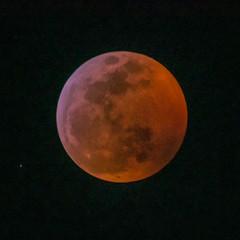Moon (23:14) (ruifo) Tags: nikon d810 nikkor afs 200500mm f56e ed vr moon lua luna eclipse 20 21 january janeiro enero 2019 full llena cheia noite night noche astro astrophotography astrofotografia astrofotografía solar system sky ceu céu cielo earth penunbra umbra lunar mexico city cdmx ciudad méxico blood bloody red vermelha roja sangue sangre astrometrydotnet:id=nova3161997 astrometrydotnet:status=solved