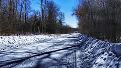 Just Ploughed Out (Bob's Digital Eye 2) Tags: bobsdigitaleye bobsdigitaleye2 driveway flicker flickr january2019 laquintaessenza perspective shadows snow snowplough snowscene tracks trees winter2019 wintercolour winterinmn