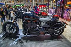 Harley-Davidson motorbike at the 35th Thailand International Motor Expo at IMPACT Challenger hall in Muang Thong Thani, Nonthaburi (UweBKK (α 77 on )) Tags: harleydavidson harley davidson motorbike bike 35 35th thailand international motor expo show fair exhibition impact challenger hall muang thong thani nonthaburi bangkok southeast asia sony alpha 77 slt dslr