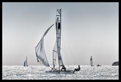 seeing the wind (ukke2011) Tags: nikond850 nikkor nikkor20050056vr sailboat hobiecat barcaavela wind vento sea mare