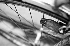 eye of the cat (chipsmitmayo) Tags: nikon f100 ilford fp4 film schwarzweiss blackandwhite nikkor 50mm f18 münster westfalen hafen kanal dek dortmundemskanal analog rad fahrrad bike bicycle katzenauge reflektor reifen speichen spoke