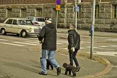 A9731HELSb (preacher43) Tags: helsinki finland building architecture cars people dogs