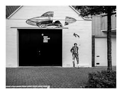 170726_154300_oly-PEN-f_oostende_the crystal ship 43/55 (A Is To B As B Is To C) Tags: aistobasbistoc b belgië belgium oostende ostend city street streetart stencil thecrystalship levalet invasion stuiverstraat timmermanstraat garage licenseplates bw blackwhite blackandwhite monochrome olympus penf tree sidewalk