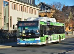 Wernigerode, Bahnhofsplatz  27.02.2019 (The STB) Tags: bus busse autobus autobús wernigerode publictransport citytransport öpnv öffentlicherpersonennahverkehr öffentlicherverkehr
