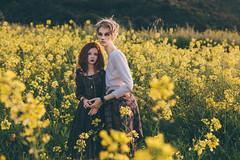 (mimiau_m) Tags: bjd asian doll supia rosy recast outdoors sunset mustard 5thmotif venitu