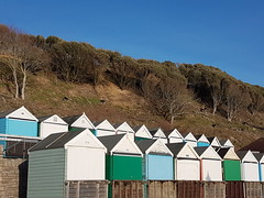 Beach huts and goats in winter sun (DorsetBelle) Tags: beach beachhuts boscombe bournemouth dorset beachlife coast lifesabeach goats