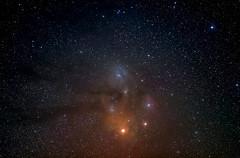 Nube di Rho Ophiuchi (piero_zampa) Tags: minitracklx deepsky nebulose rhoophiuchi stelle stars polveri skynyght astrophotography astrofotografia astrophoto nikon tokina