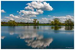 Eclaircie d'avril (Pascale_seg) Tags: paysage landscape riverscape étang printemps primavera spring reflets reflections riflessi nuages clouds nuvole ciel sky cielo bleu blue blu moselle lorraine france grandest nikon