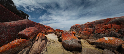 #7110 Bay of fires