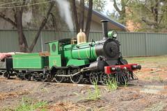 1214 profile (james.sanders2) Tags: 1214 ejwinter live steam locomotive 440 nswgr 1 116 scale 5 inch gauge australia loco green engine garden track 127mm z12 class passenger cowcatcher